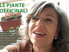 Marisa Canzoneri